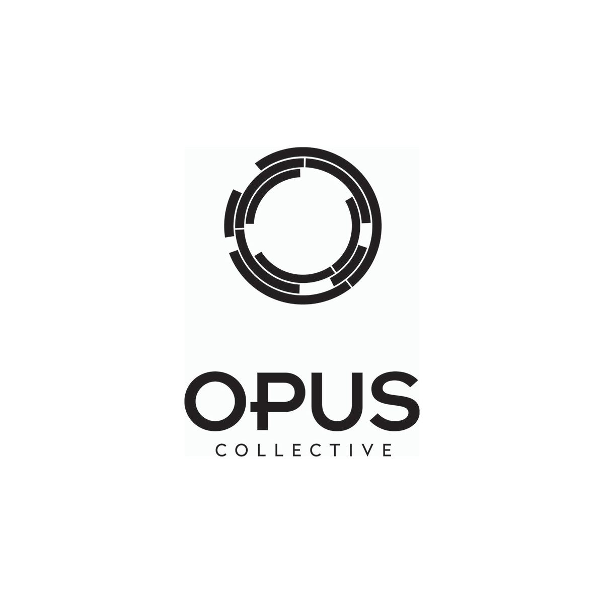 2opus_logo_fin