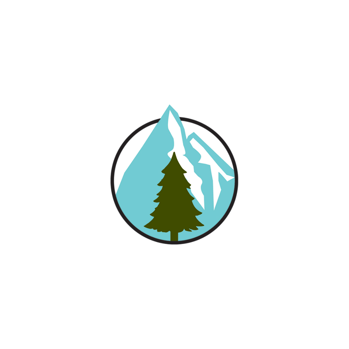 3fn_logomark
