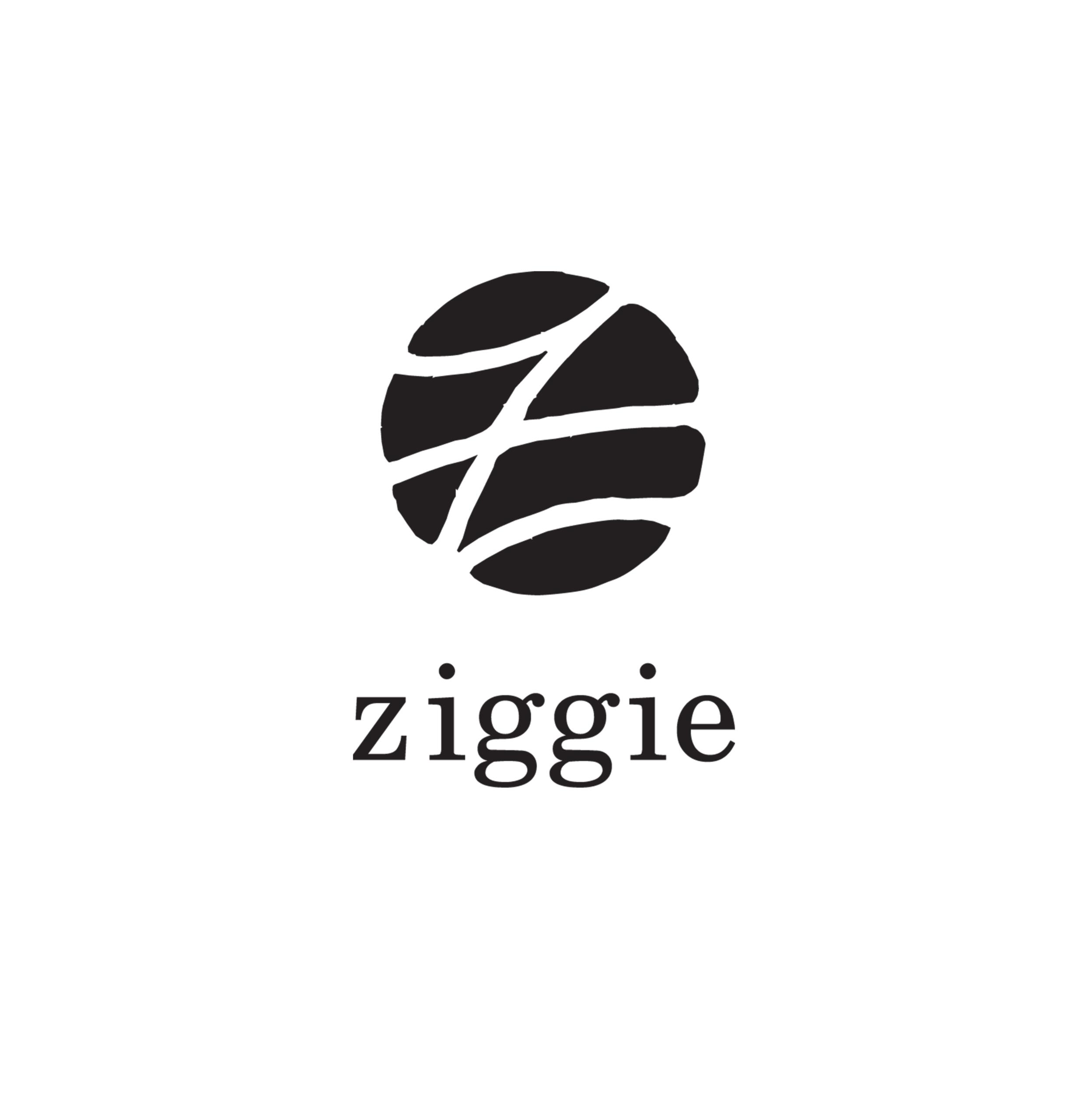 https://bschelling.com/wp-content/uploads/2017/04/ziggie_bk-scaled.jpg