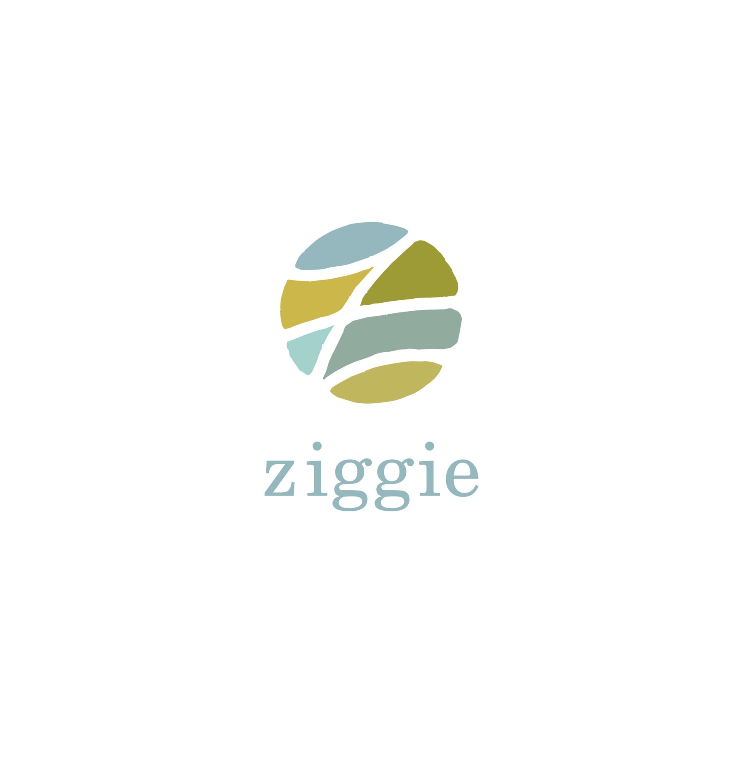 https://bschelling.com/wp-content/uploads/2020/09/ziggie_color-1_web_opt-scaled.jpg